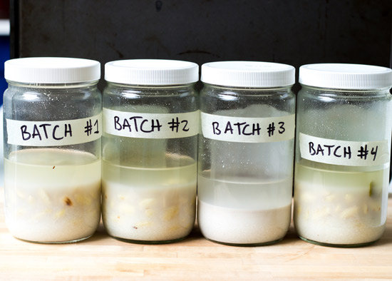 Four Test Batches to Make the Best Horchata